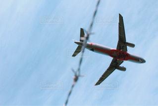 飛行機の写真・画像素材[1314203]