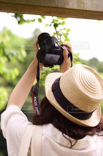 カメラ日和の写真・画像素材[1833587]