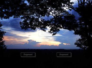 夕日,木,雲,青,枝,シルエット,オレンジ,カンボジア