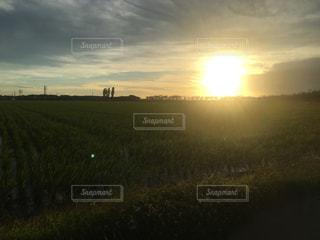 風景,夕暮れ,景観,草木,夏の日