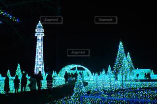 夜のライトアップされた街の写真・画像素材[1315511]