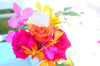 近くの花のアップの写真・画像素材[1372583]