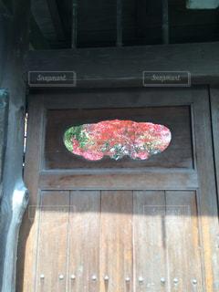 長岡天満宮で見つけた、秋の写真・画像素材[1613675]