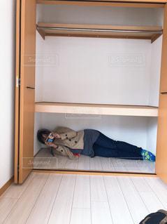 冷蔵庫の上で眠っている猫の写真・画像素材[1859973]