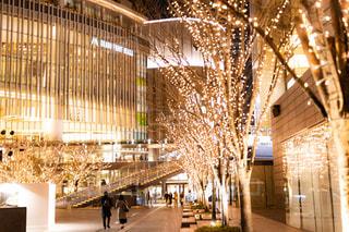女性,男性,恋人,2人,建物,夜,夜景,光,イルミネーション,都会,照明,デート,都会の夜景,グランフロント大阪,シャンパンゴールド