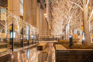 建物,夜景,水面,樹木,イルミネーション,リフレクション,デート,都会の夜景,グランフロント大阪,シャンパンゴールド