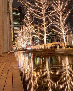 夜,夜景,水面,反射,樹木,イルミネーション,都会,照明,リフレクション,デート,都会の夜景,グランフロント大阪