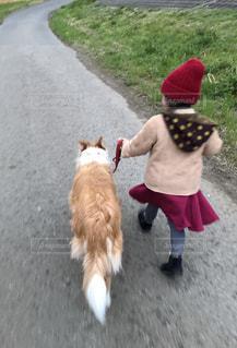 楽しいお散歩の写真・画像素材[2006381]
