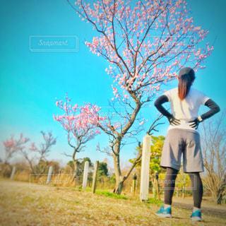 ジョギングの写真・画像素材[1812975]
