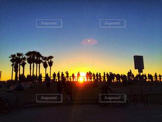 夕日,夕焼け,シルエット,ヤシの木,LA,西海岸,カリフォルニア,Venice,ベニス