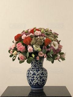お花の語らいの写真・画像素材[2032232]