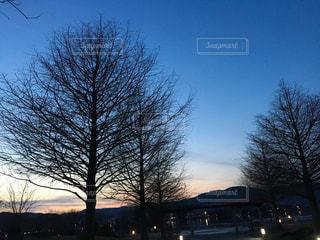 自然,空,公園,夕日,きれい,夕暮れ