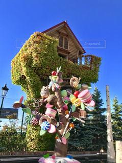 お菓子の国のtree houseの写真・画像素材[1466992]