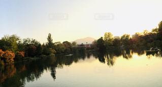 池に映って映し出される紅葉の写真・画像素材[1617804]