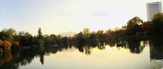 秋,夕日,紅葉,夕焼け,池,北海道,中島公園,札幌市,インスタ映え