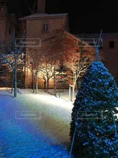 雪景色ライトアップの写真・画像素材[1733267]