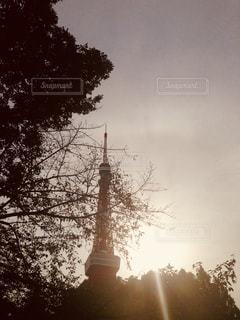 空,夕日,東京タワー,屋外,夕暮れ,樹木
