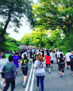 ニューヨーク,群衆,スポーツ,屋外,道路,走る,樹木,人物,人,旅行,ジョギング,マンハッタン,セントラルパーク,run