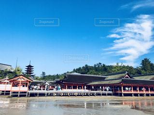 厳島神社の写真・画像素材[1312724]
