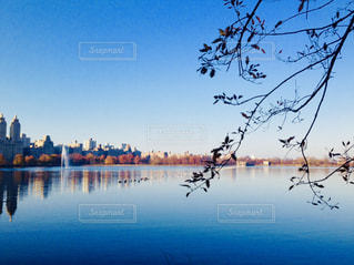 セントラルパークの湖の写真・画像素材[1312945]