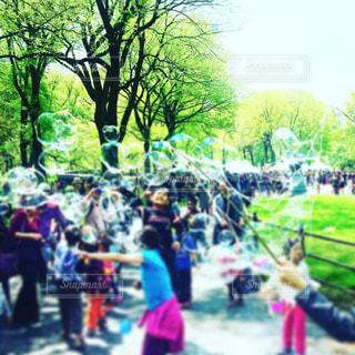 子ども,公園,夏,屋外,緑,晴れ,青空,シャボン玉,樹木,人物,暑さ対策