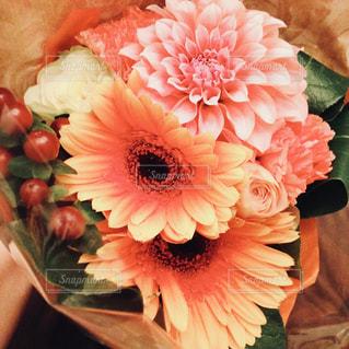 花束の写真・画像素材[1376799]