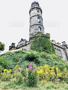 花の庭とカールトン・ヒルの写真・画像素材[1382584]