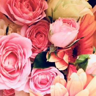 ピンクの花の花束の写真・画像素材[1440057]