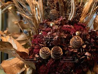 クリスマスの花の写真・画像素材[2811553]