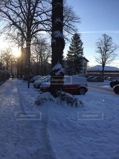夕日,雪,綺麗,Snapmart,ハンブルク,フォトコンテスト