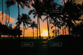 夕日,ハワイ