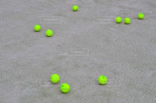 テニスの写真・画像素材[3004901]