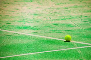 テニスの写真・画像素材[3007603]