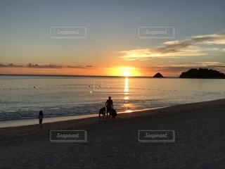 海,夕日,屋外,ビーチ
