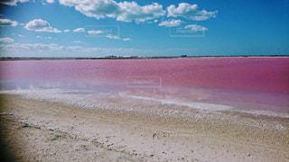 ピンク,カラフル,青空,カンクン,メキシコ,塩湖,ピンクレイク,ピンクの湖