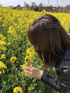 女性,自然,風景,花,花畑,屋外,植物,綺麗,晴れ,晴天,黄色,手,菜の花,景色,女,鮮やか,人物,外,横顔,人,flower,イエロー,デート,ドライブ,カラー,大分,長崎鼻,yellow,多彩,18歳,豊後高田,18才,長崎鼻リゾートキャンプ