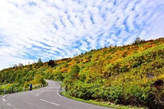 風景,紅葉,雲,岩手,秋空,景観,八幡平