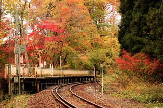 風景,紅葉,福島県,塔のへつり駅