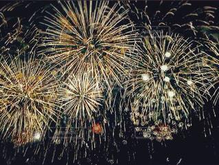 満天の花火の写真・画像素材[1316569]
