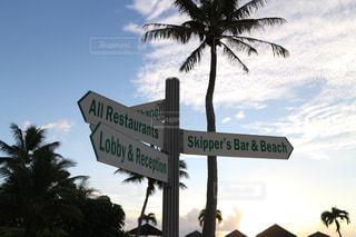 海,海外,ビーチ,外国,ホテル,サイパン