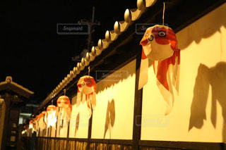 金魚の写真・画像素材[1393416]