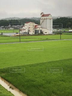 雨の田園の写真・画像素材[1413224]