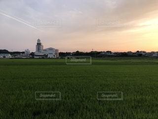 夕暮れの田園の写真・画像素材[1413283]
