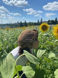 自分で作った麦わら帽子の写真・画像素材[4762146]
