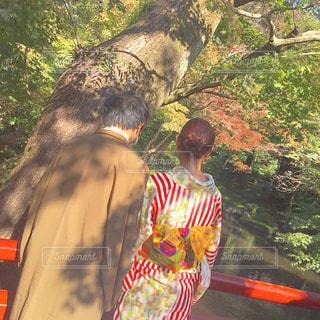 屋外,きれい,散歩,人物,着物,人,浴衣,旅行,旅,未来,デート,のんびり,鎌倉,夢,ポジティブ,日中,可能性,寺巡り