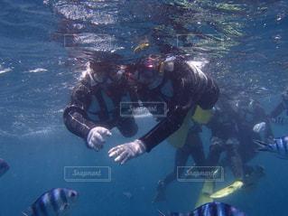 魚たちとの思い出の写真・画像素材[1583922]
