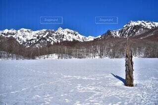 冬の戸隠の写真・画像素材[4198553]