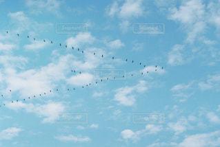 青空に描いたものの写真・画像素材[1351457]