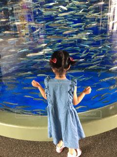 水族館と女の子の写真・画像素材[1337350]