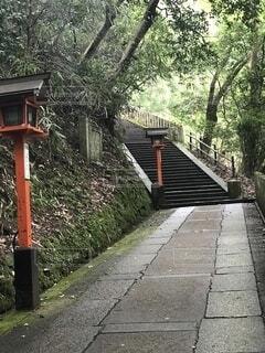 京都の写真・画像素材[4156173]